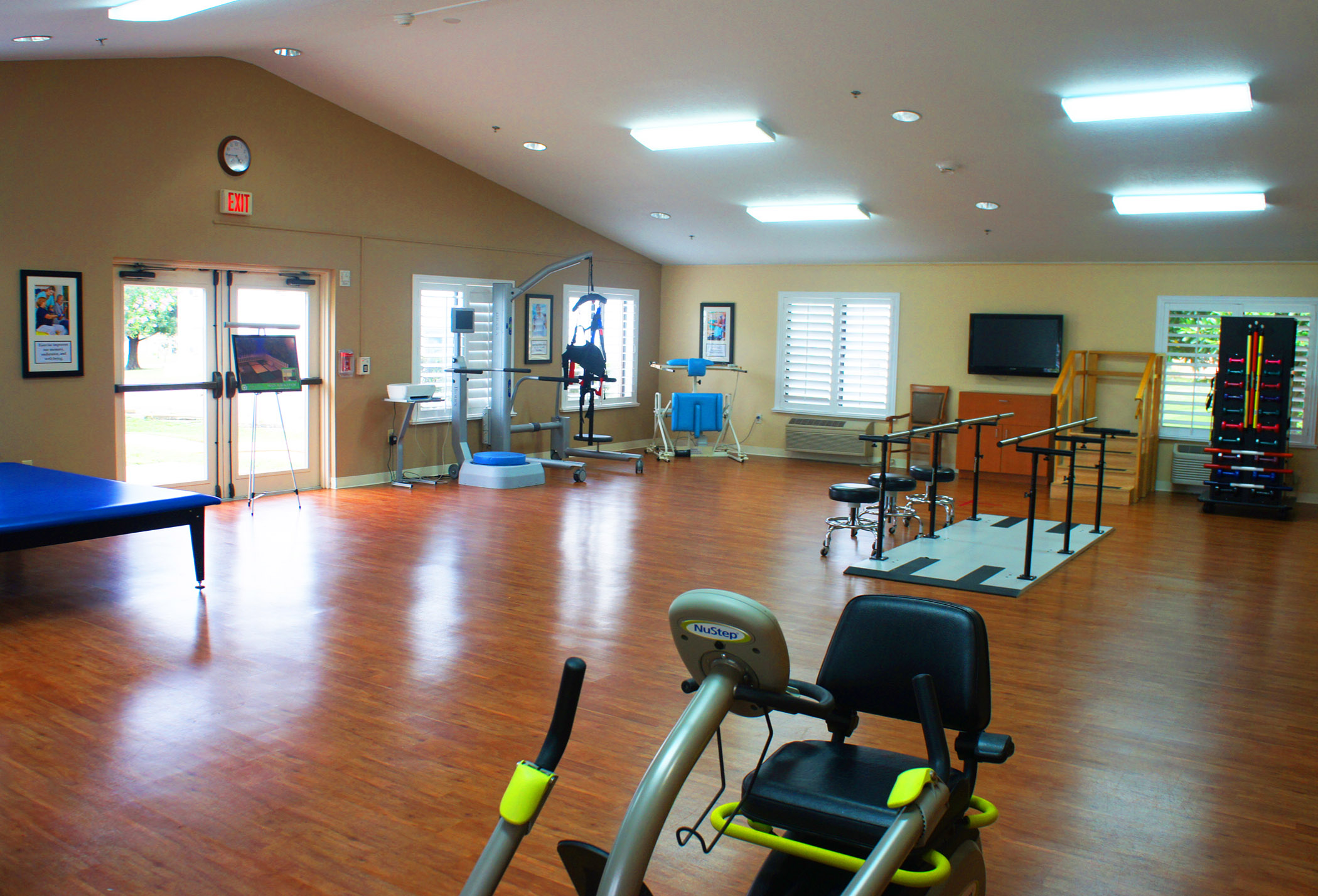 therapy gym2