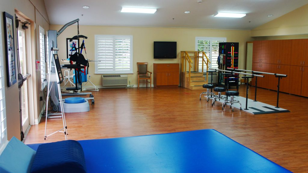 therapy gym3