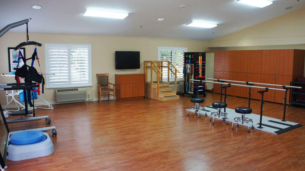 therapy gym4